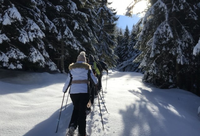 Snowshoe Walks